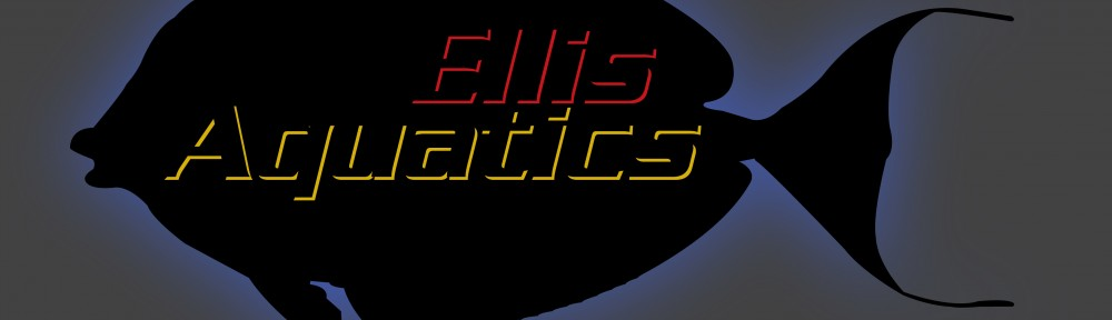 Ellis Aquatics